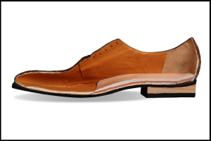 shoe trees prevent lining rot